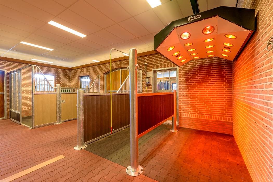 Interieur showroom paardenstallen